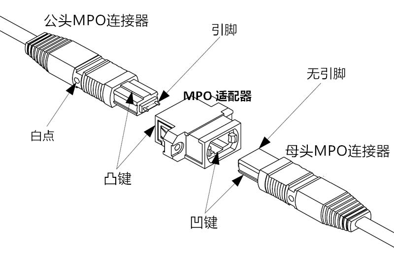 MTP/MPO结构