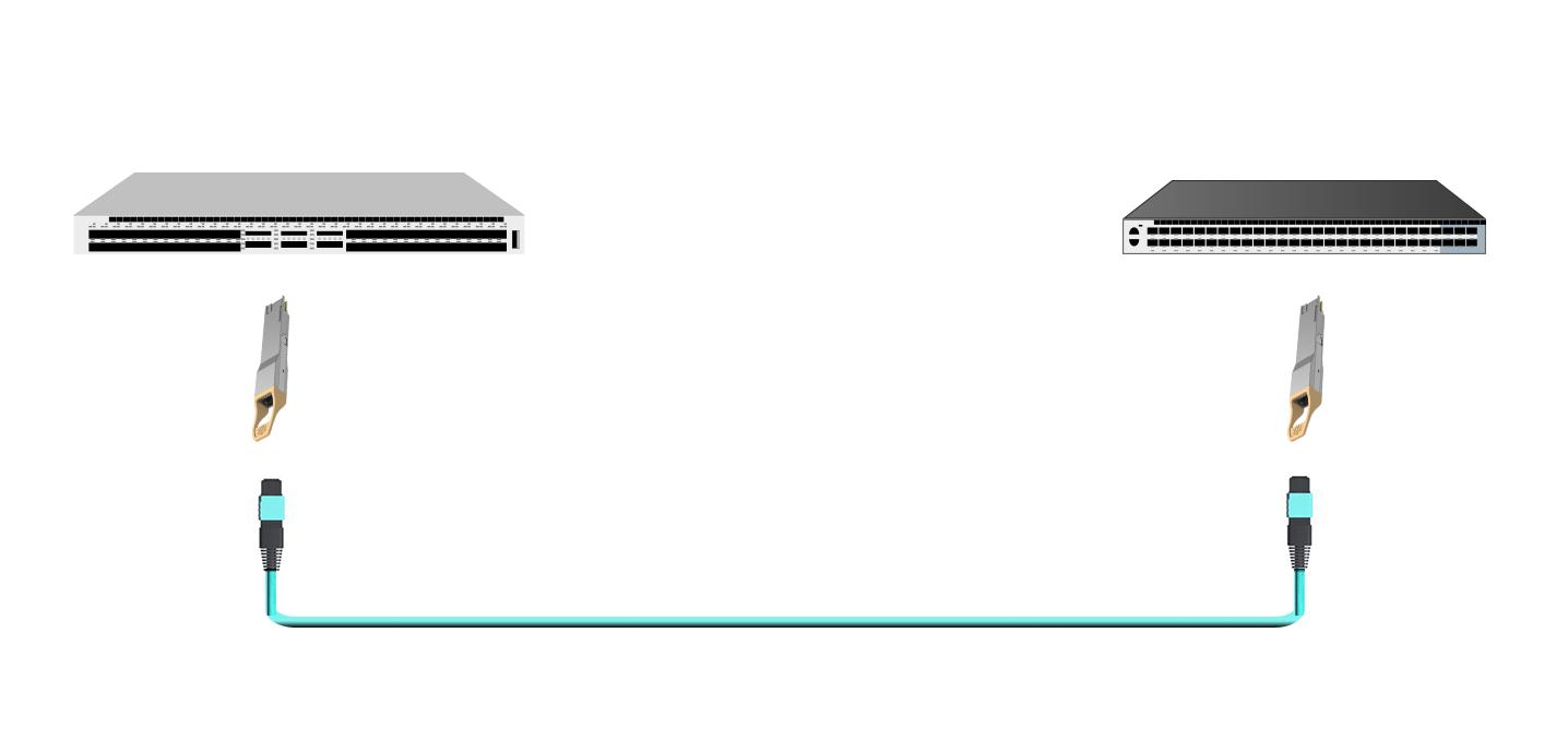 使用MTP/MPO跳线的400G-400G直接连接